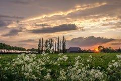 Coucher du soleil en Hollande Photographie stock libre de droits