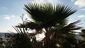 Coucher du soleil en Israël Images libres de droits