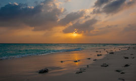 Coucher du soleil en Maldives Beau coucher du soleil coloré au-dessus de l'océan en Maldives vues de la plage Coucher du soleil é Photographie stock libre de droits