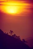 Coucher du soleil en montagnes, silhouette d'arbre avec le soleil scénique de coucher du soleil plus de Photographie stock libre de droits