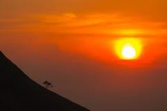 Coucher du soleil en montagnes, silhouette d'arbre avec le soleil scénique de coucher du soleil plus de Photo libre de droits