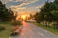 Coucher du soleil en parc Photos stock