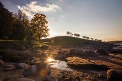 Coucher du soleil en parc inférieur dans Peterhof Photo libre de droits