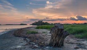Coucher du soleil en parc national de marais photo stock