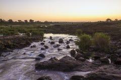 Coucher du soleil en rivière de Sabie en parc national de Kruger, Afrique du Sud photos libres de droits