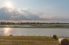 Coucher du soleil en rivière PO de delta de l'Italie Photo stock