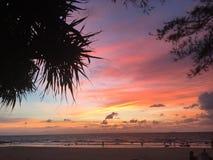 Coucher du soleil encadré par les palmiers sihouetted Photos libres de droits