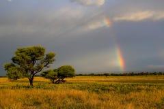 Coucher du soleil et arc-en-ciel de Kalahari Images libres de droits
