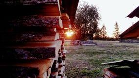Coucher du soleil et bois Photographie stock libre de droits