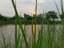 Coucher du soleil et ciel Photo stock