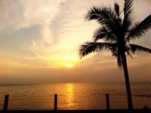 Coucher du soleil et noix de coco photographie stock libre de droits