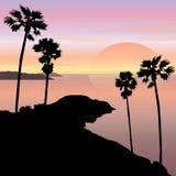 Coucher du soleil et paysage de cap de lever de soleil illustration de vecteur