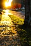Coucher du soleil et sentier piéton Photographie stock libre de droits