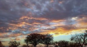 Coucher du soleil et silhouettes dans Perris, la Californie du sud Images stock