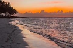 Coucher du soleil et siluet des palmiers sur la plage image stock