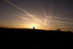 Coucher du soleil et traces de fond et d'avion de ciel bleu Image stock
