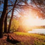 Coucher du soleil fantastique Le soleil de soirée au-dessus de la rivière sous la lumière du soleil brillante Photos stock
