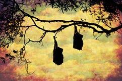 Coucher du soleil Forest Flying Foxes Illustration Stock
