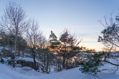 Coucher du soleil gelé photo libre de droits