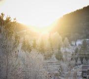 Coucher du soleil gelé Photos libres de droits