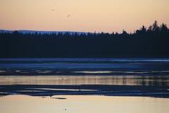 Coucher du soleil glorieux mais gelant au-dessus d'une baie côtière écossaise 14 de village Photographie stock libre de droits