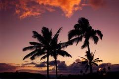 Coucher du soleil hawaïen photos libres de droits