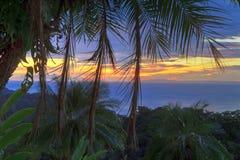 Coucher du soleil HDR de palmier Photos stock