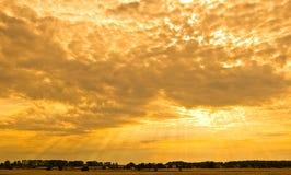 Coucher du soleil jaune Photo libre de droits