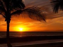 Coucher du soleil jaune canari Image stock