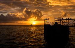 Coucher du soleil jaune lumineux sur Mallory Square à Key West avec des oiseaux Photos stock