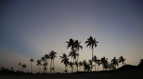 Coucher du soleil kenyan Photos libres de droits