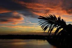 Coucher du soleil, la Floride Image stock