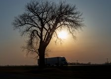 Coucher du soleil long-courrier sur les prairies photo stock