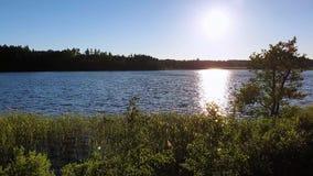 Coucher du soleil magnifique sur la vue de lac de forêt Beaux milieux d'?t? l'europe banque de vidéos