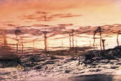 Coucher du soleil majestueux d'été au-dessus de la mer Ciel excessif Photographie stock libre de droits