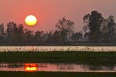 Coucher du soleil merveilleux sur un marais de nepali, Bardia, Népal Photos stock