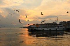 Coucher du soleil, mouettes et ferry Photographie stock