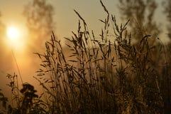 Coucher du soleil octobre Images stock