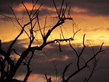 Coucher du soleil orageux Images libres de droits