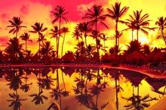 Coucher du soleil orange au-dessus de Palm Beach près de mer Image stock