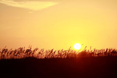 Coucher du soleil orange au-dessus des dunes Photographie stock libre de droits