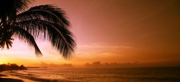 Coucher du soleil orange dans Polynésie Images libres de droits