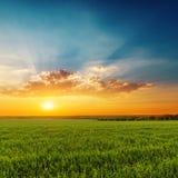 coucher du soleil orange dramatique avec des nuages au-dessus de champ d'herbe verte Images stock