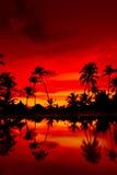 Coucher du soleil orange et rouge au-dessus de plage de mer avec des paumes Photo stock