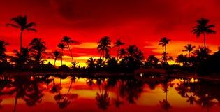 Coucher du soleil orange et rouge de panorama au-dessus de plage de mer Photographie stock
