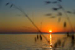 Coucher du soleil orange sur la mer Photos stock