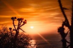 Coucher du soleil ou lever de soleil au-dessus de la surface de mer Image libre de droits