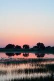 Coucher du soleil ou lever de soleil au lac, avec des arbres et la réflexion d'herbe Photos stock