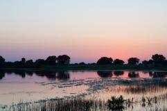 Coucher du soleil ou lever de soleil au lac, avec des arbres et la réflexion d'herbe Photos libres de droits