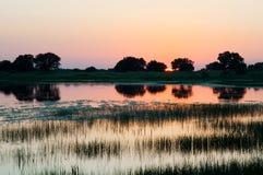 Coucher du soleil ou lever de soleil au lac, avec des arbres et la réflexion d'herbe Photographie stock libre de droits